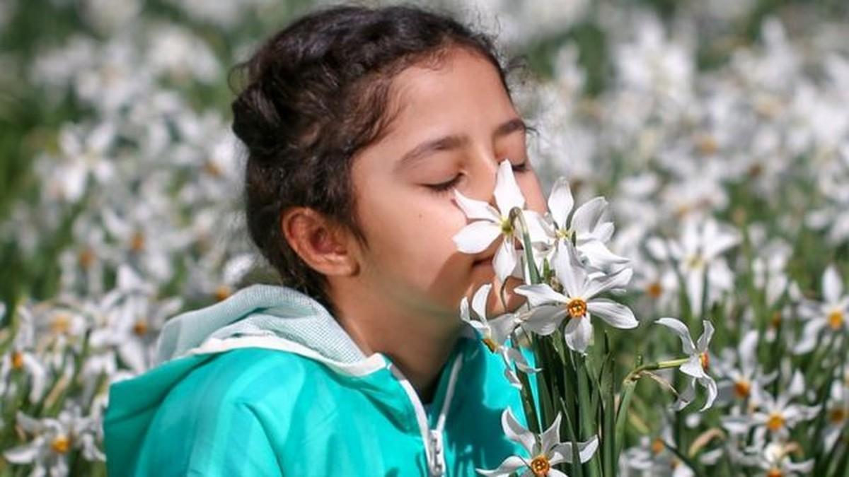 O que é o treinamento de olfato que combate um dos sintomas da Covid-19