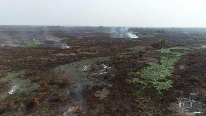 Fogo subterrâneo dificulta o combate às chamas no Pantanal